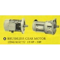 BRUSHIESS GEAR MOTOR