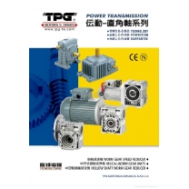 HOLLOW SHAFT WORM GEAR REDUCER (SINGLE SHAFT)