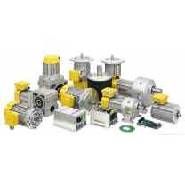 TPG BRUSHLESS HOLLOW SHAFT WORM GEAR MOTOR