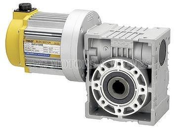 BRUSHIESS HOLLW SHAFT WORM GEAR MOTOR